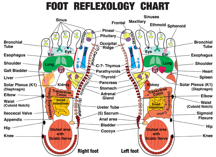 footchart1